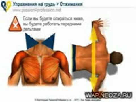 Вы должны научиться ставить достижимые цели, потому что тренировки будут бросать вам достаточно серьезный вызов, если вы хотите накачать мышцы груди