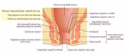 Препараты и хирургия