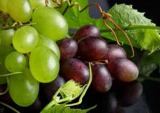 Виноград полезен при различных заболеваниях