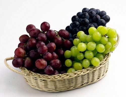 Виноград является общеукрепляющим средством для организма человека