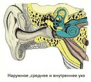 Все о головокружении и его лечении