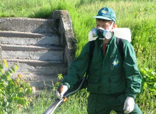 Профессиональная обработка дач, садовых участков и других открытых территорий для уничтожения иксодовых клещей проводится опытными дезин секторами